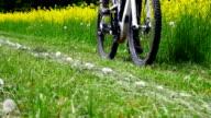 Riding Electric Mountain Bike Medium Shot (4K/UHD to HD) video