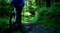 GIMBAL Riding Electric Mountain Bike POV video