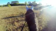 HD: Riding Horse video