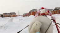 Riding in a sleigh, rear view of a horse, tail video