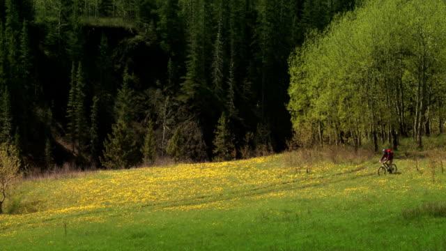 Riding through a field video