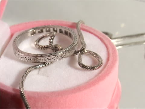 ring and chain in a beautiful case video