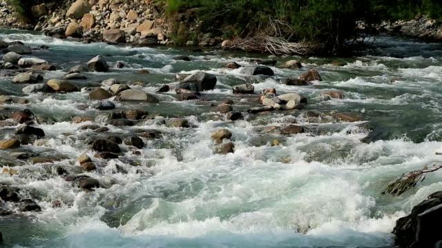 Rio Ara river and bridge San Nicolas de Bujaruelo in Ordesa Aragon Huesca Spain video