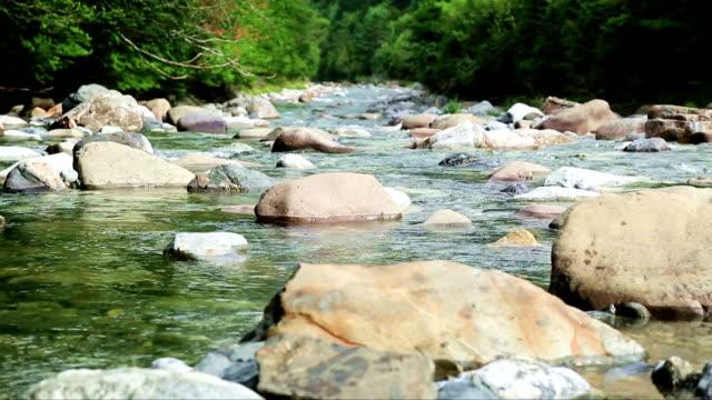 Rio Ara river Bujaruelo in Valle de Ordesa valley Pyrenees Huesca Aragon at Spain video