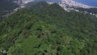 Rio de Janeiro, Brasil landmark view with the city and de forest video