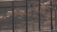 Rio Grande River through Border Fence video