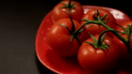 ripe fresh tomatoes branch lies on red plate on the table video
