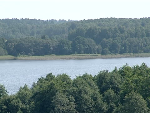 rippled lake surrounded by forest. view from observation deck. video