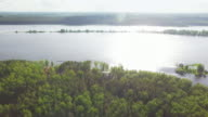 River and forest - aerial view video