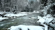 River in the mountains of Caucasus video