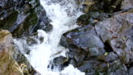 River is flowing down through rocks. video