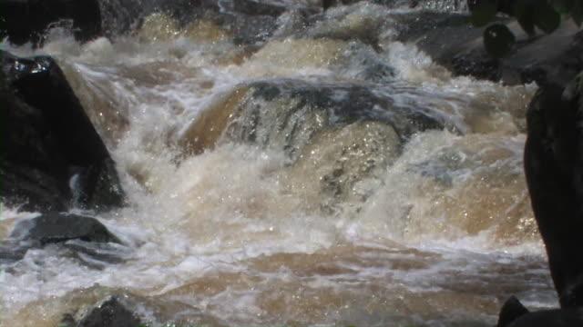 River Rapids 6 video