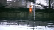River reflects street signal. video