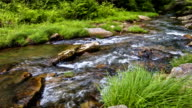River relaxing nature landscape scenics video