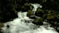 River #1 video