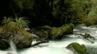 River #2 video