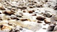 River (HD) video
