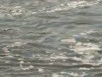 River Water video