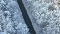 AERIAL Road in the wintry forest video