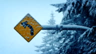 Road Sign In Heavy Snowfall video