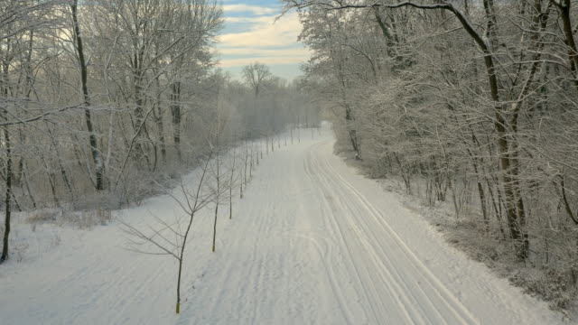 AERIAL Road through the wintry forest video