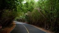 Road to Annaberg Ruins, St John, Virgin Islands video