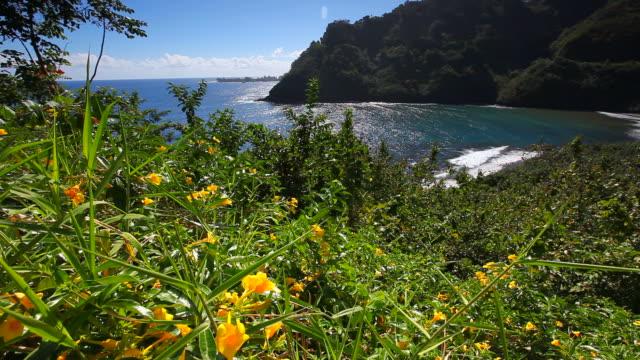 road to hana - maui hawaii video