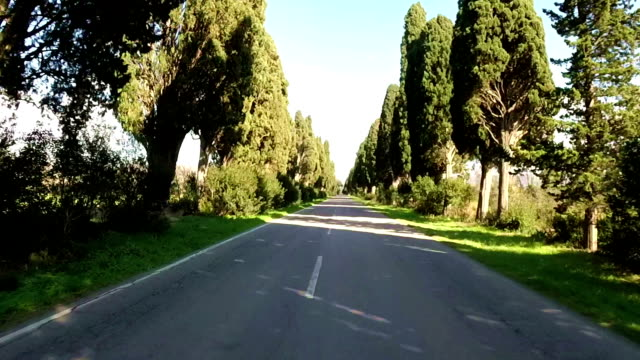 Road with cypress trees in Chianti region,Tuscany,Italy, video