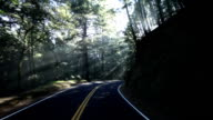 Road with light shafts video