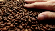 Roasted coffee beans close up. video