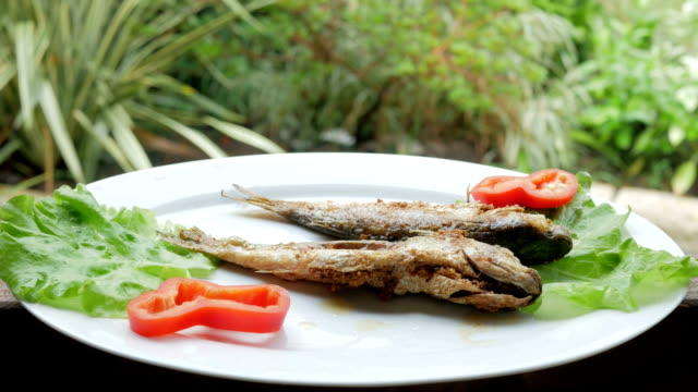 Roasted sea fish with fresh herbs and pepper. Behind the cafe is rain video