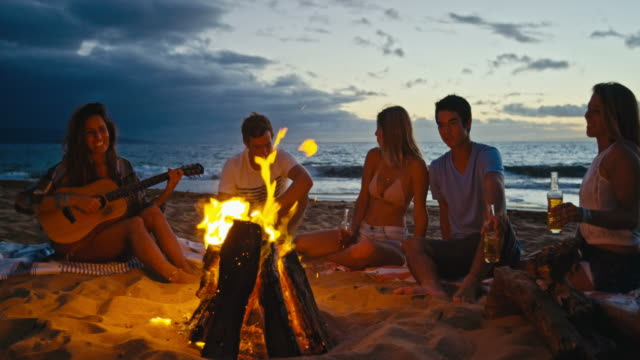 Roasting Marshmallows over Fire video