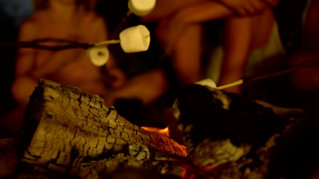 HD: Roasting Marshmallows video