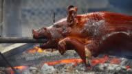 HD roasting pig video
