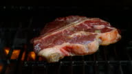 Roasting T-Bone Steak on Barbecue Grill video