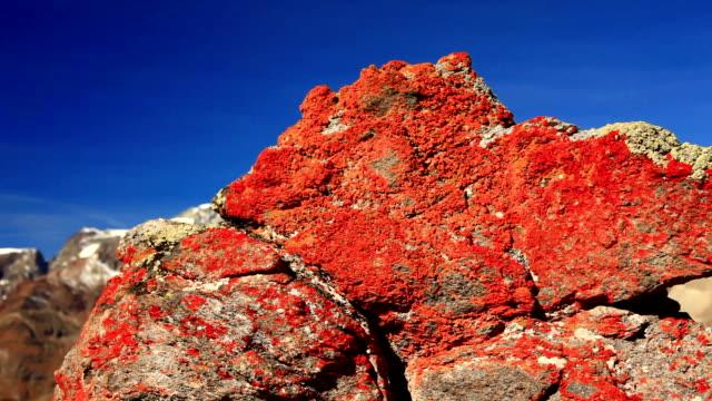 Rock detail and Matterhorn in background video