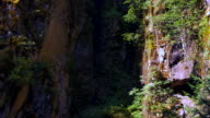 Rock Face Crevasse, Small Ferns and Dark Shadow, Stone Wall and Moss video
