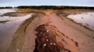 Rocks and grasses on the Purekkari cape video