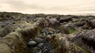 Rocks and stones on Icelandic beach video