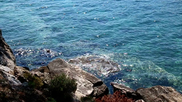 Rocks at coast video