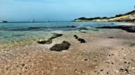 Rocky beach in Thailand video