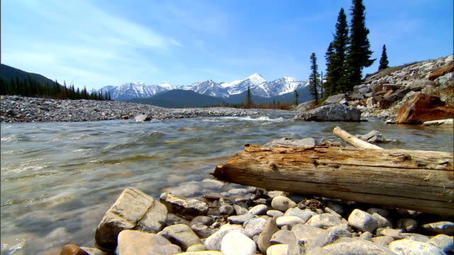 Rocky Mountain Stream video