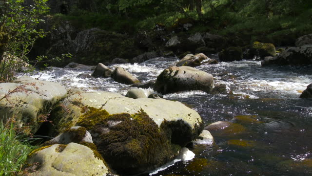 Rocky river in the Galloway Forest Park, Scotland video