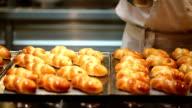 HD VDO :rolls for baking video