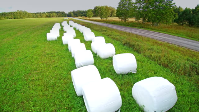 Rolls of white hays on the grass field video