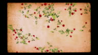 Romance background loop. Falling roses on grunge paper. video