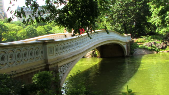Romantic Bridge HD video