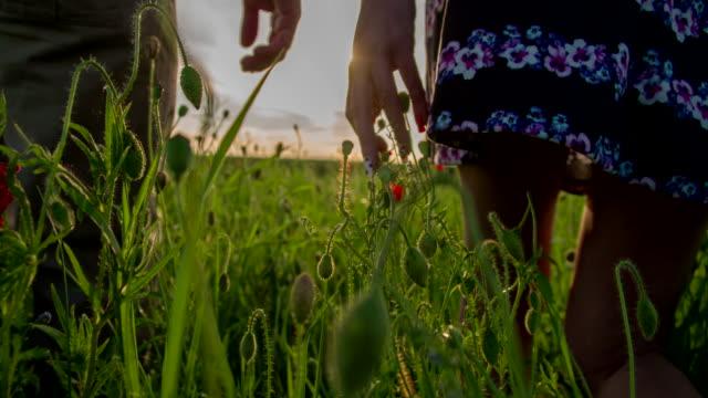 CU TS Romantic Couple In The Poppy Field video