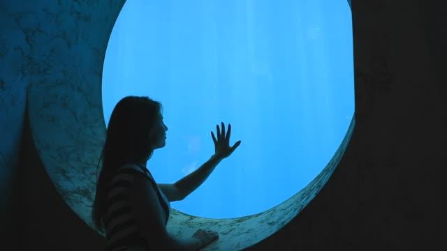 romantic girl admiring the underwater world of the aquarium video