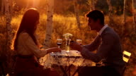 Romantic Marriage Proposal in Nature video
